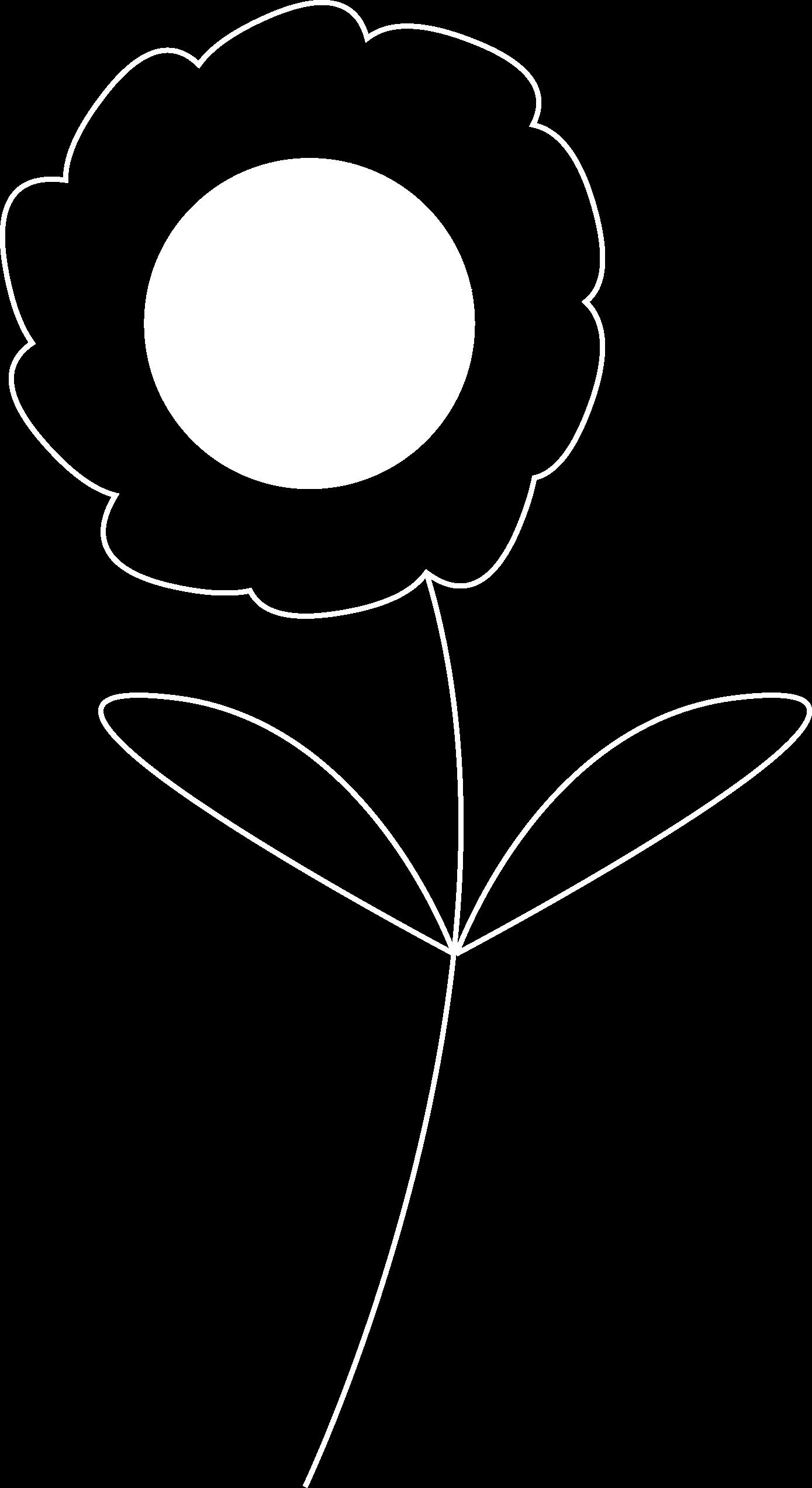 Lazylane bloem